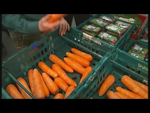 Scale of UK food waste 'repugnant'