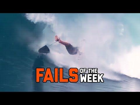Nature Strikes Back – Fails of the Week | FailArmy