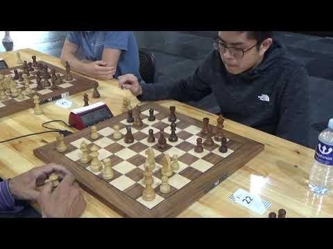 Endgame study save attempt: NM Daudzvardis - IM Low Zhen, Bird's opening blitz