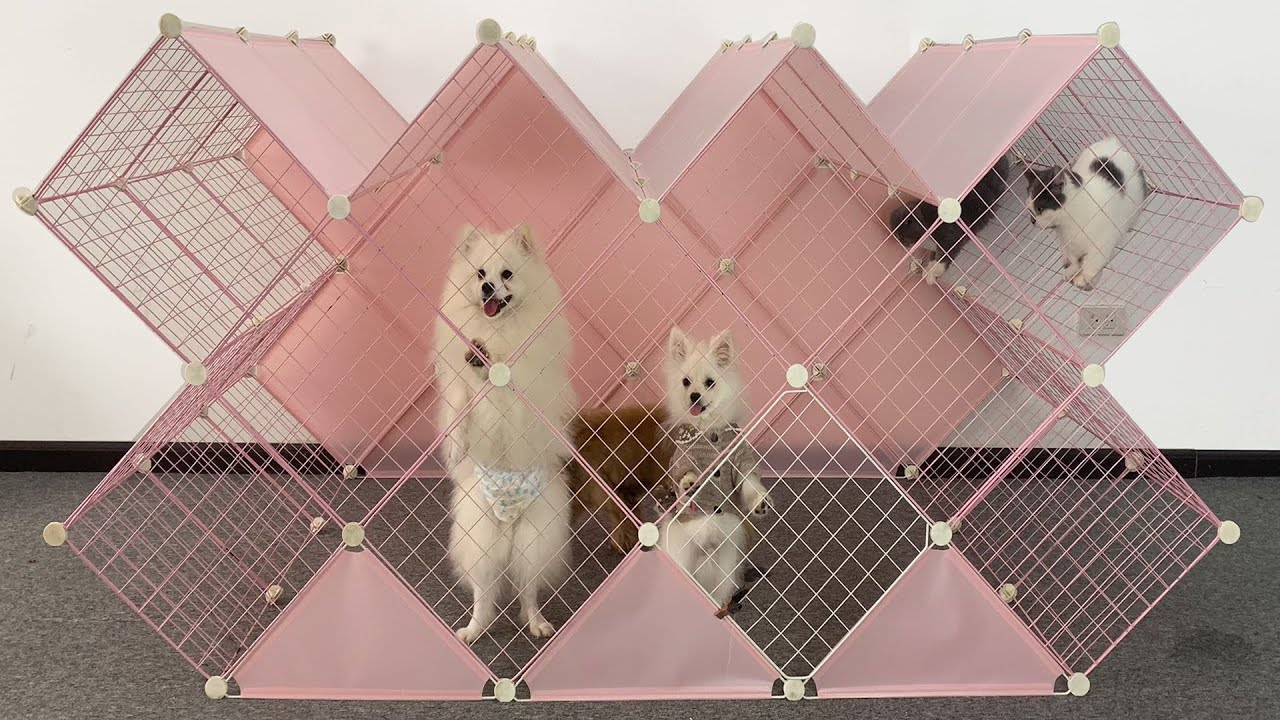 DIY Diamond House For Pomeranian Puppies With Cube Grid Wire   How To Make Dog Cat House   MR PET 83