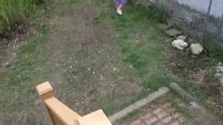 Maddy Easter 2014 movie 1 wmv