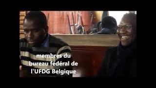 GENERIQUE TEST MISE EN LIGNE SAFARI TV GUINEE  UFDG