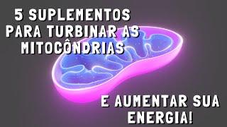 5 suplementos para turbinar as mitocôndrias e aumentar sua energia!