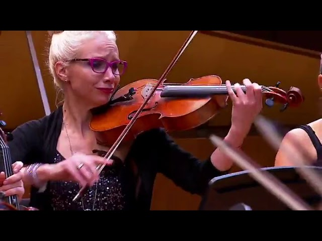 Nicolas Arsenijevic - Fantasia, Heitor Villa - Lobos