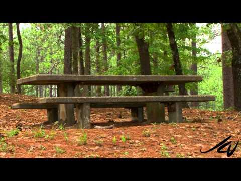 Tourism -  Louisiana to Texas Visitors Bureau and sights -  YouTube