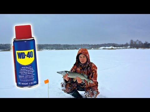 Смотреть Ловля щуки на WD-40, Рыбалка на щуку с жерлицами (Зимняя рыбалка на живца) / Fishing with WD-40