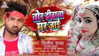 #SAD_SONG_2020 तोर दीवाना मर  जाई //Tor Deewana Mar Jai #Singer_Dilip_Raja