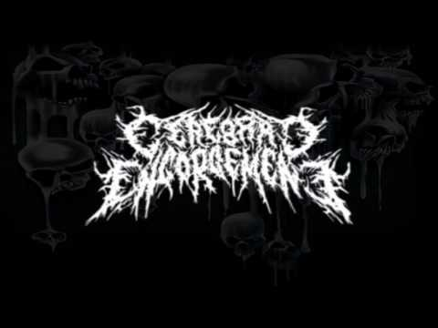 Cerebral Engorgement - Raped By Elephants (Torsofuck Cover)