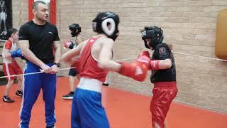Тренировки по боксу. Фото.