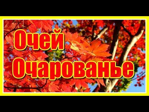 Ужегов Генрих Николаевич. Практические уроки поэзии