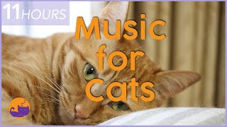 Separation Anxiety Music for Cats | Soothing Lullaby Mix | 11 HOURS