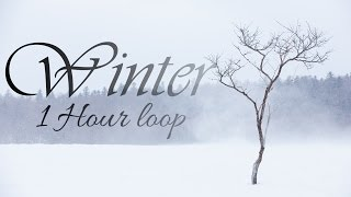 Скачать Vivaldi Winter 1 Hour Loop Mvt 1 Only Allegro Non Molto