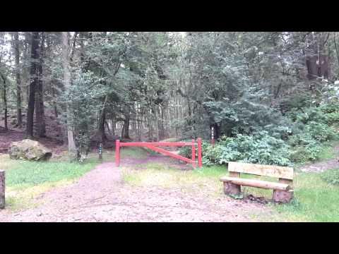 13.9.2015. Ejstrup søerne og skov.