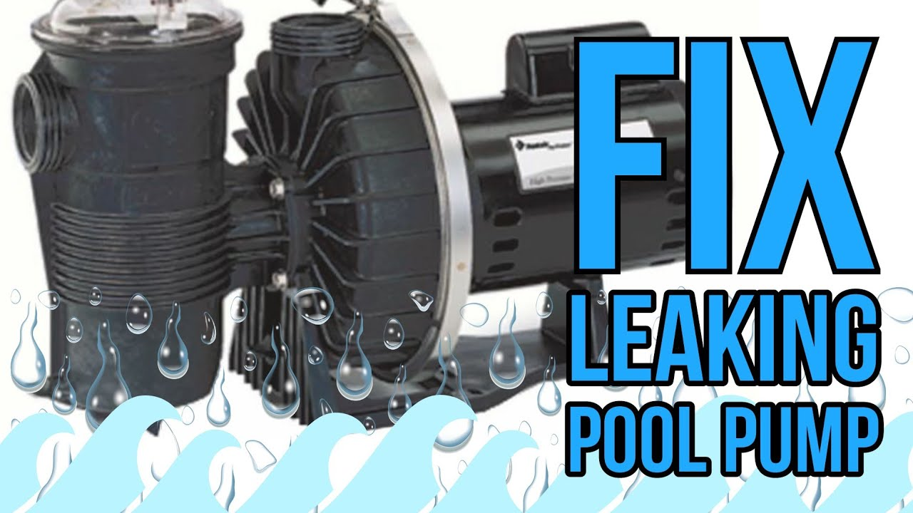 How To Fix Leaking Pool Pump | Pentair Challenger Motor Shaft Seal Replacement & Housing Gasket Leak