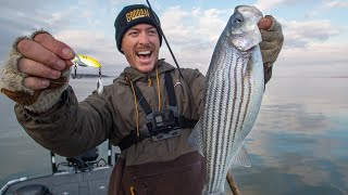 Jigging Winter Striped Bass with Blade Baits
