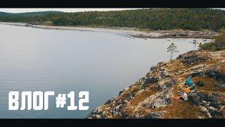 Влог#12. Медведи, Грибы, Муравьи и Туристы.