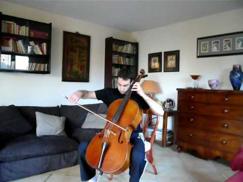 Nothing else matters - cello cover