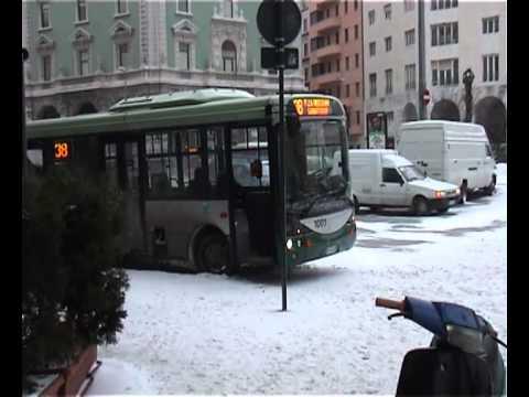autobus 8 trieste orario - photo#17