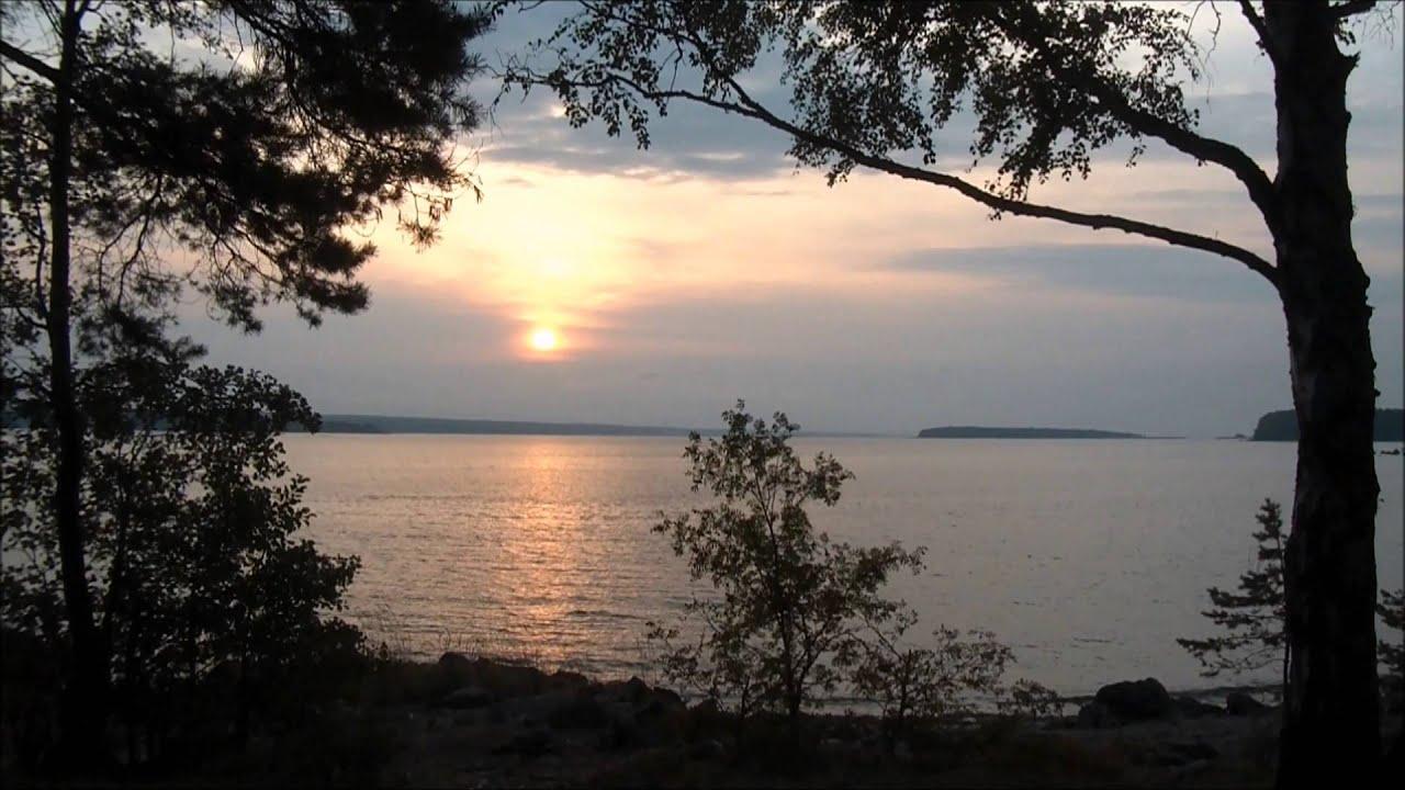 Березовые острова Финского залива