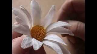 Fiori di carta crespa - Crepe paper flowers: Margherita // Daisy