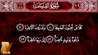 surat al qiyama 75 سورة القيامة children memorise kids learning quran almishawi with children