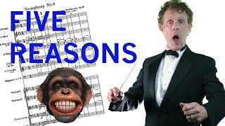 DOES AN ORCHESTRA NEED A CONDUCTOR!? - 5 reasons why - 😂 Rainer Hersch