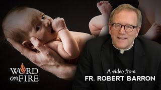 Fr. Robert Barron on Being Born Again