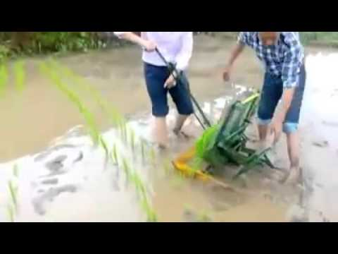 food safety in vietnam-http://www.foodsafety.com.vn/
