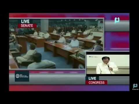 Pimentel voted as Senate president of 17th Congress