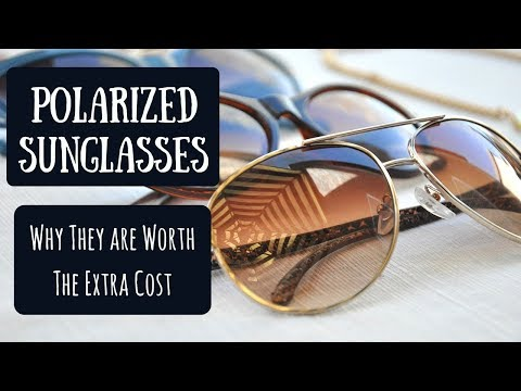 Are Polarized Sunglasses Worth the Extra Cost? | Tips for Buying & Caring for Your Glasses