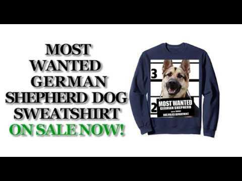 most-wanted-german-shepherd-funny-dog-sweatshirts---men's,-women's,-kid's---black,-navy,-heather