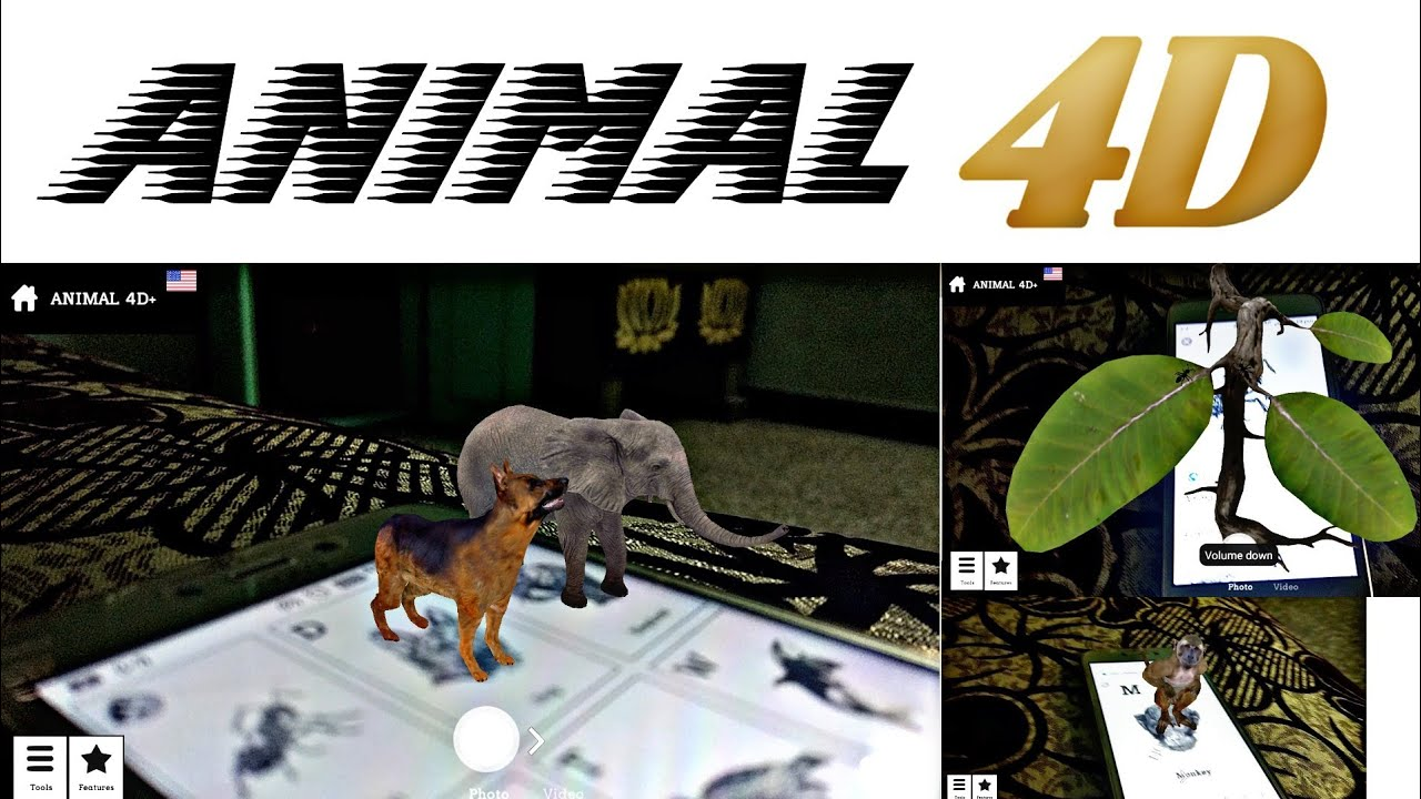 How To Use Animal 4D+ Application | Virtual Reality Photos | Hologram Photos
