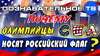 Почему олимпийцы США носят российский флаг? (Познавательное ТВ, Артём Войтенков)