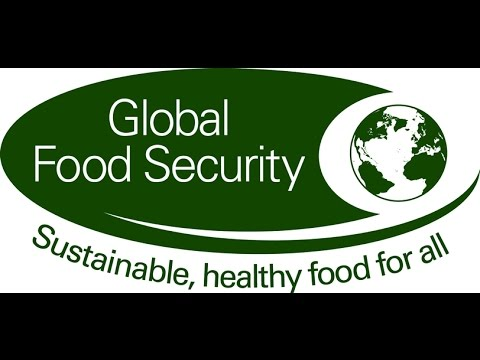 Solving the world's dumbest problem: hunger | Food Security Panel | Full Panel