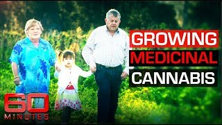 Grandparents illegally growing cannabis to save granddaughter with epilepsy | 60 Minutes Australia