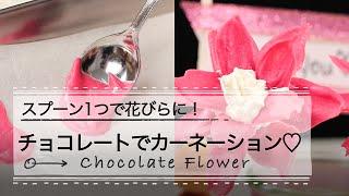 ①スプーン1つで花びらに!チョコレートでカーネーション♡ 母の日にスプ...