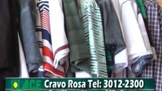 Baixar Cravo Rosa - ACEV na TV (23/12 a 27/12)