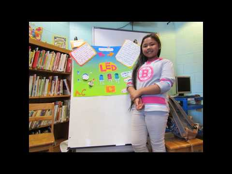 Lynn Ma Ingalls Elementary School 2017 Science Fair