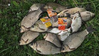 Секретная Наживка которая спасла  Рыбалку на Карася!Жарим рыбу. Фидер на Днепре#рыбалка#карась#фидер