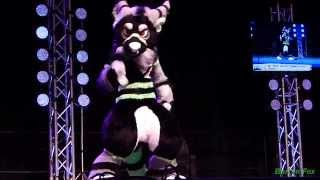 Anthrocon 2014 - Fursuit Dance Competition - Tayerr