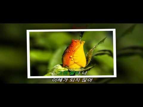 Karaoke (lời hàn) bài hát: Say it! What are you doing? (OST of Descendants of the Sun)