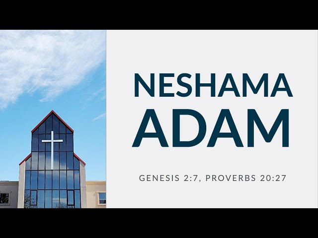 Neshama Adam (Genesis 2:7, Proverbs 20:27) by Rev. Andrew Pak