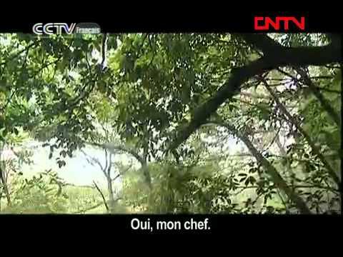 CCTVF - Chine - Fière allure sur Monts et Vaux -  笑傲江湖 - Episode 7
