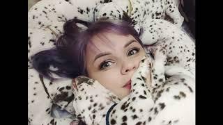 Самые красивые щенки Далматина. Уже можно купить. The most beautiful puppies Dalmatian. You can buy.