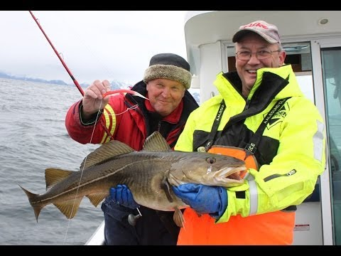 морская рыбалка европа