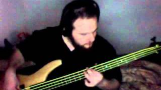 Stone Temple Pilots - Lady Picture Show bass cover
