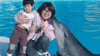 小陶德被海豚親!騎天鵝船看水舞!野柳海洋世界好好玩~ Sea World Kid Play | 小陶德沛莉 玩具開箱