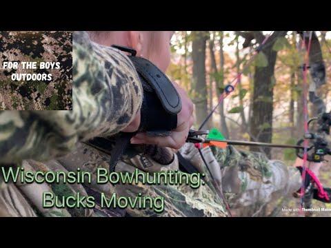 Wisconsin Bowhunting: Bucks Moving!