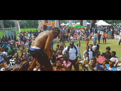 Slimcase energetic performance at the DANO World Milk Day Event