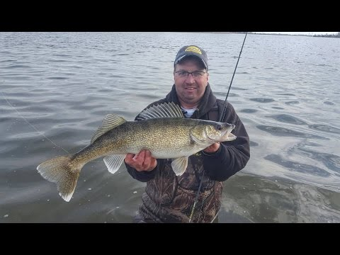 Shore Fishing Walleye On Devils Lake